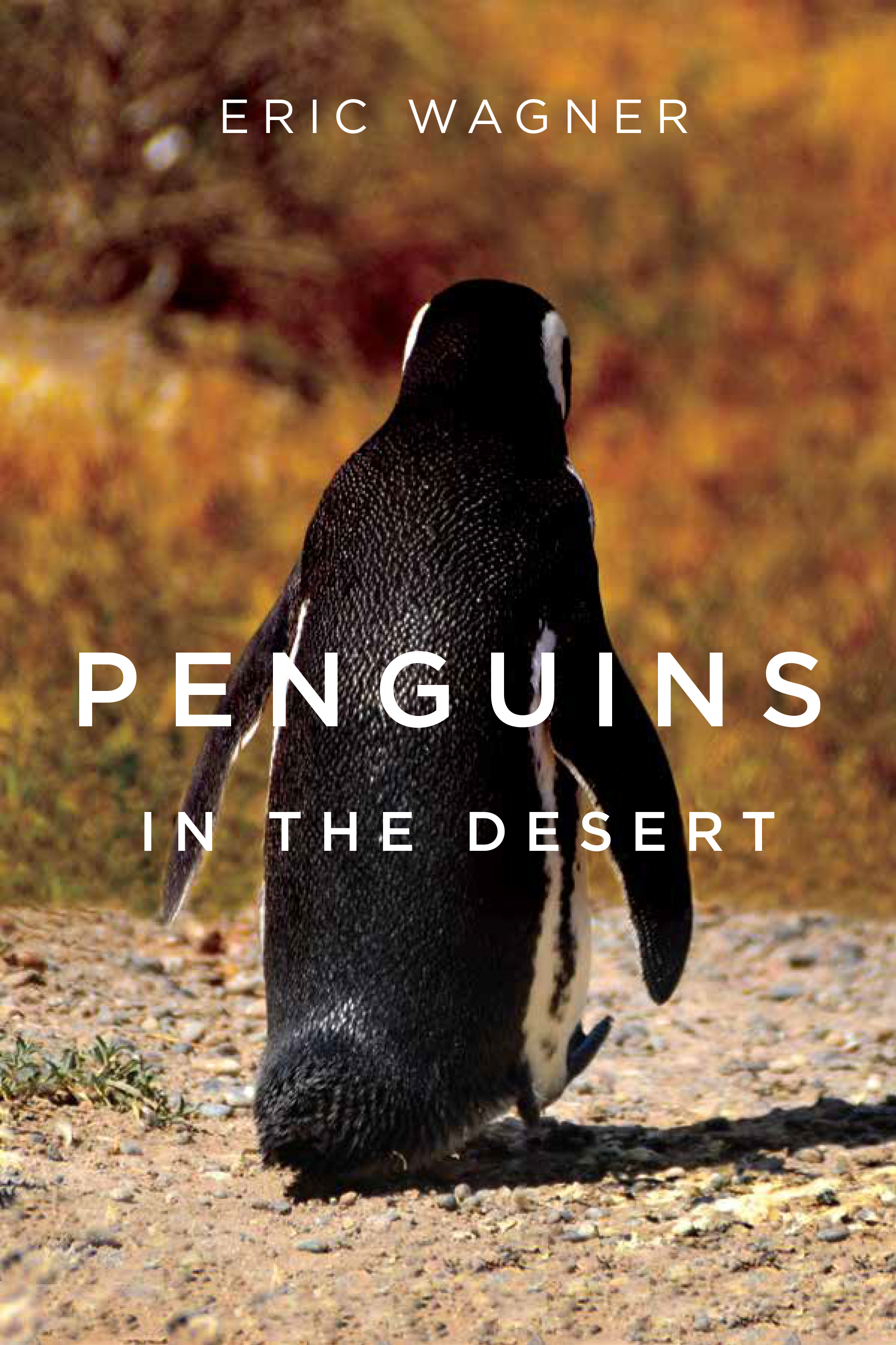 """Penguins in the Desert"" by Eric Wagner"
