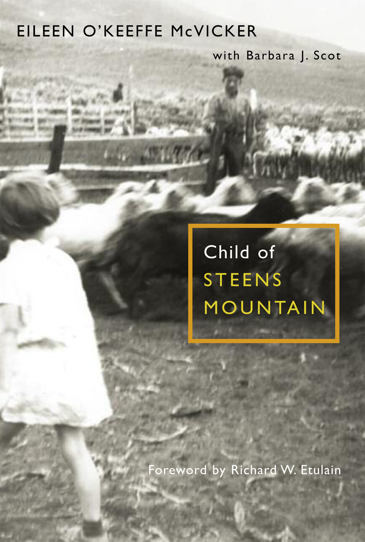 Child of Steens cover