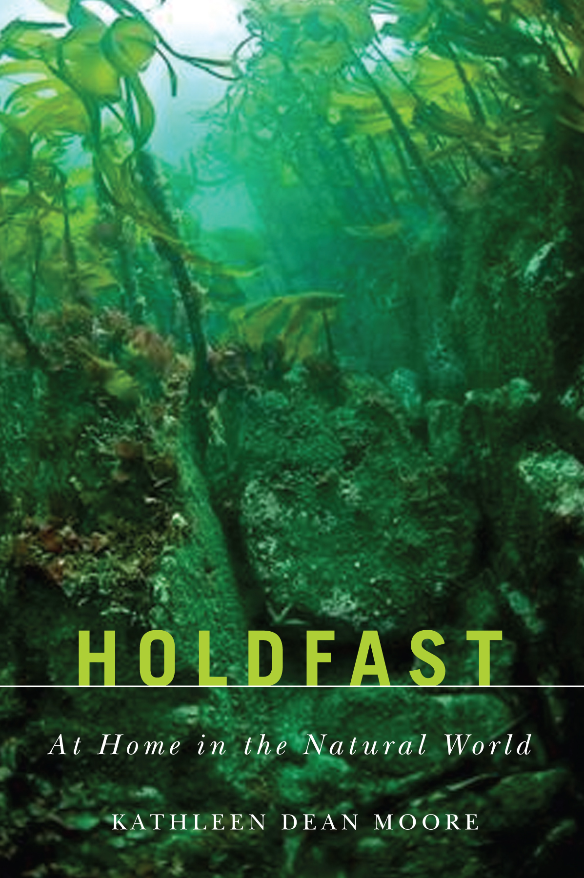 Holdfast cover
