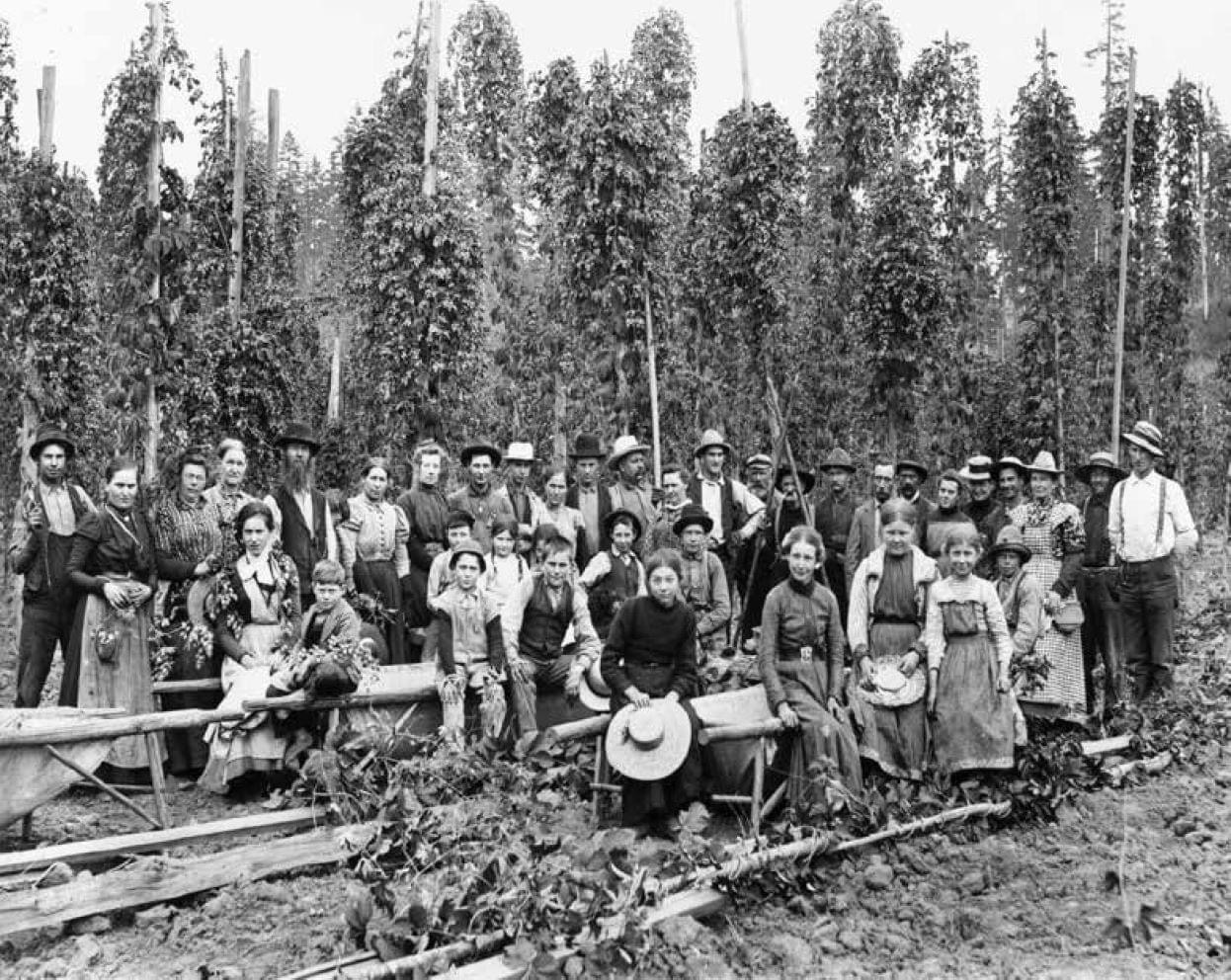 Pickers, Oregon City, circa 1890