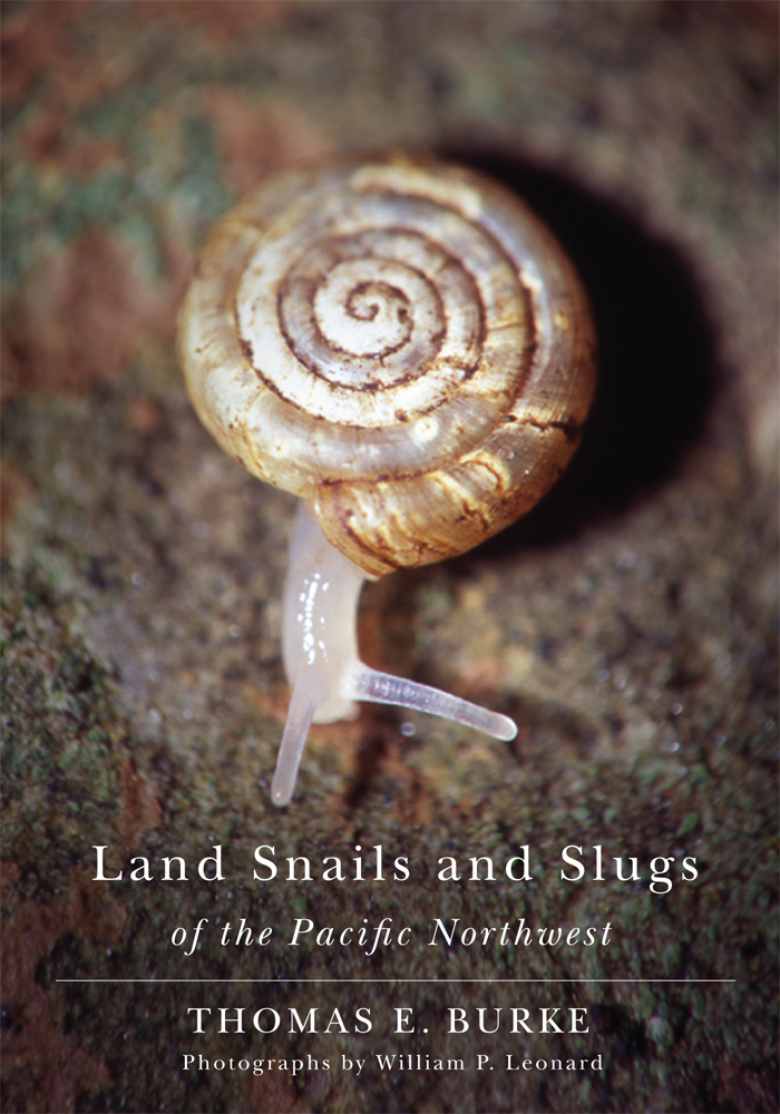 Land Snails cover