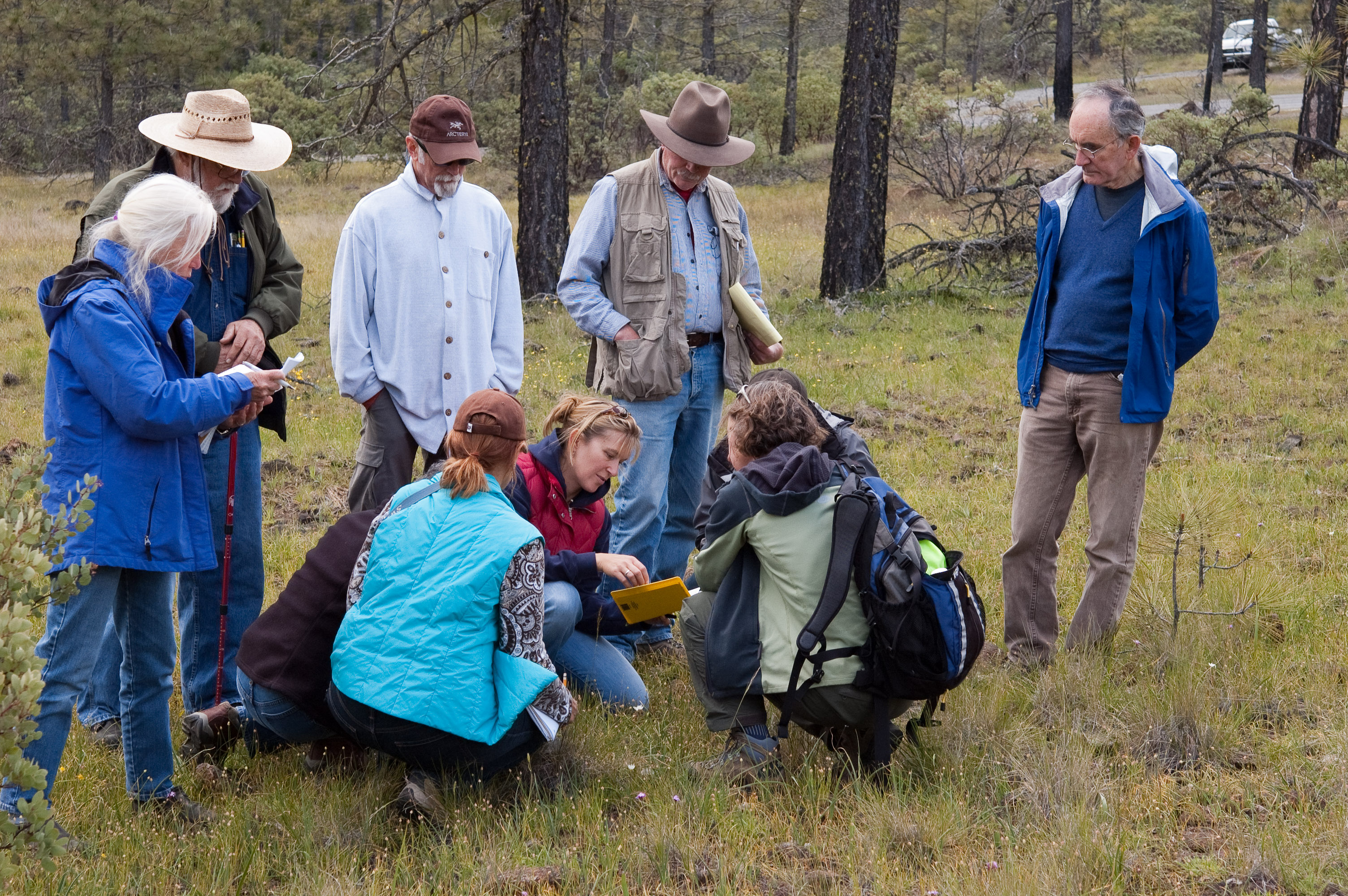 Grass workshop hosted by the Siskiyou Field Institute at Deer Creek Center. Photo by Robert Korfhage.